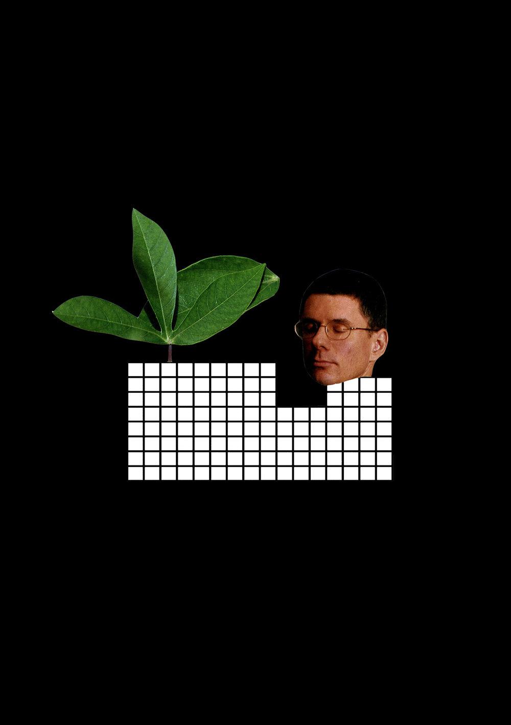 plant boy.jpg