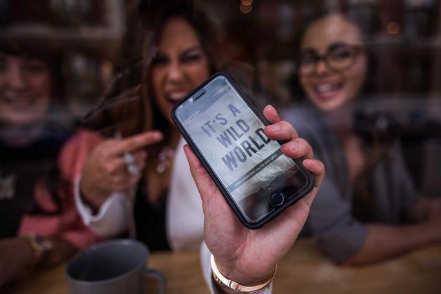 Elixir Media | Social Media Manager