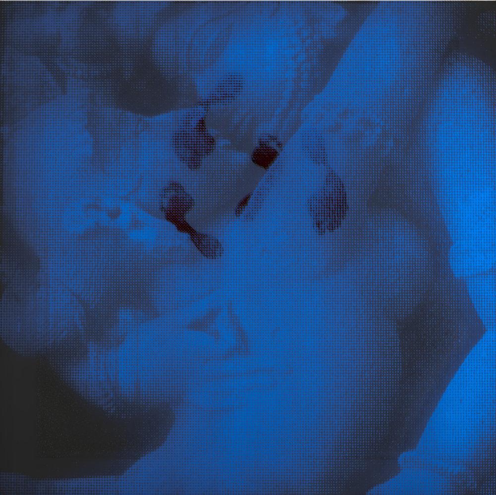 Empreinte  Vision de nuit  120 X 120 cm - boite altuglas  et bois