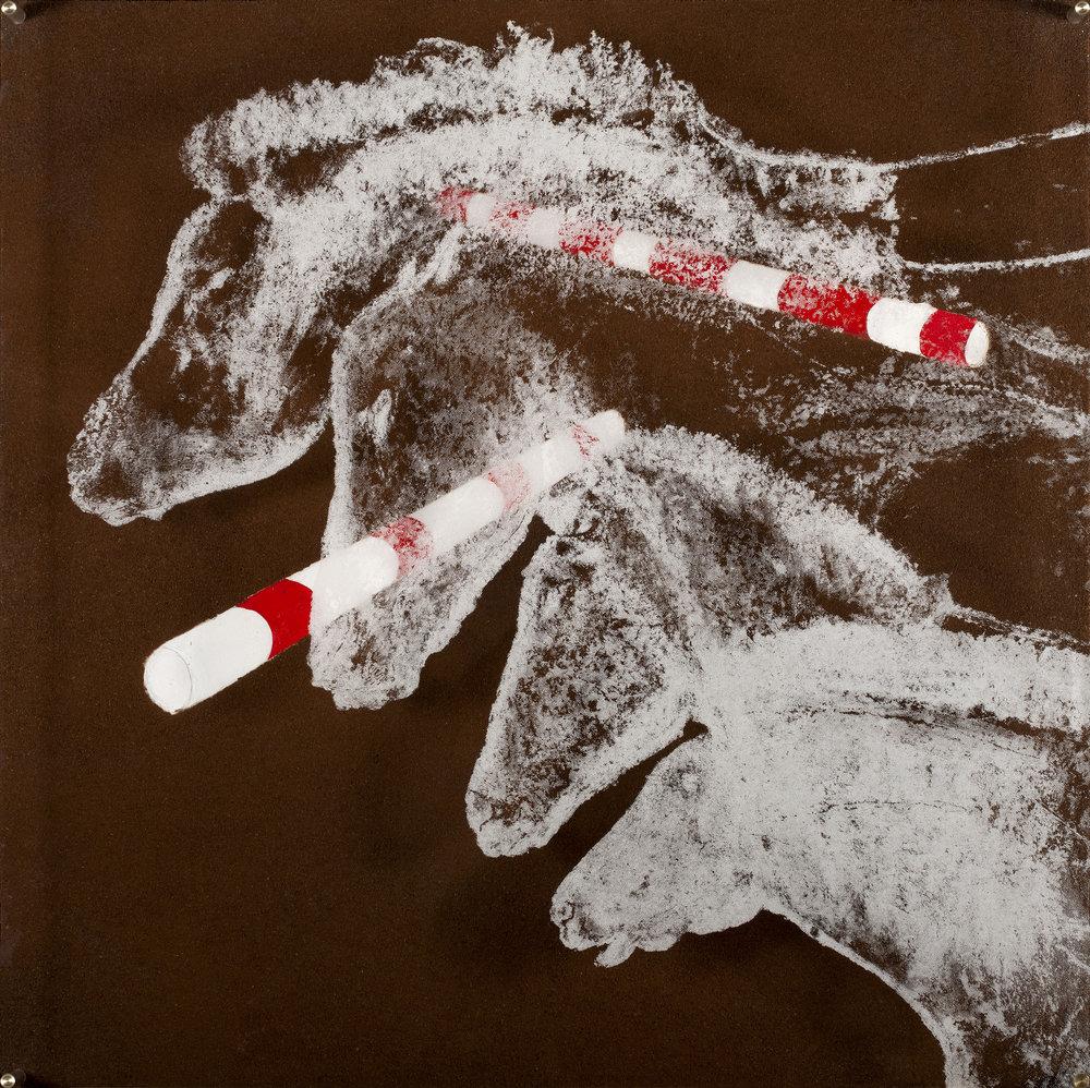 Chevaux Chauvet  Vision de jour  70 X 70 cm - boite altuglas et bois