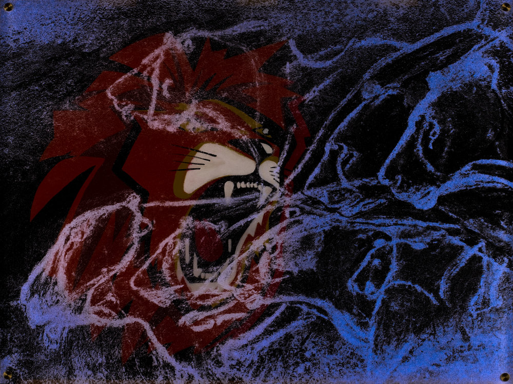 Confrontation  Vision de nuit  45 X 60 cm - boite altuglas et bois