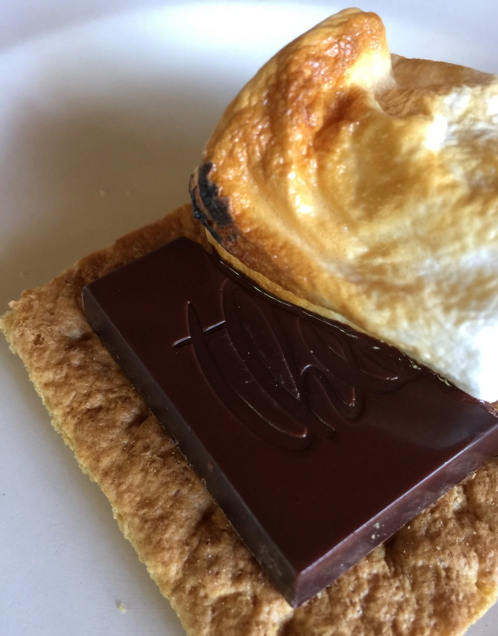 Theo Chocolate S'Mores