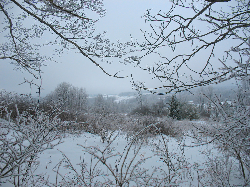 winter farm view copy.jpg