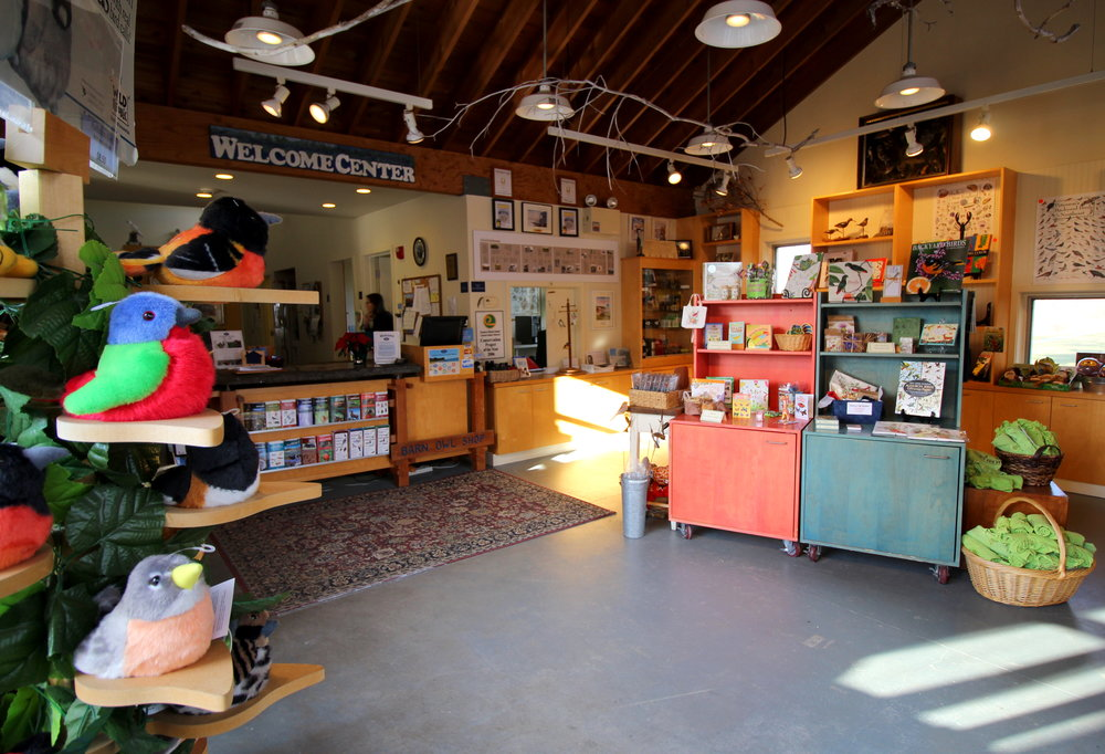 12-21-16 owl shop.JPG
