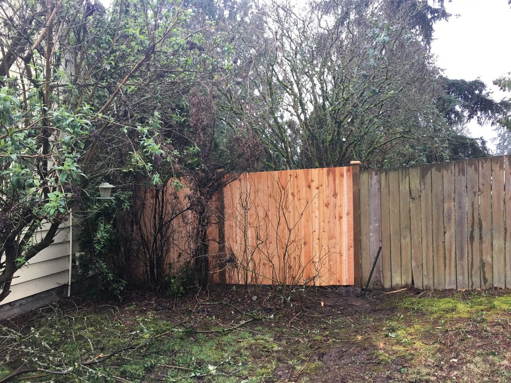 Front view of new fence