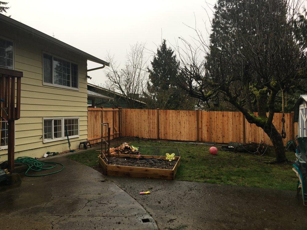 New cedar fence