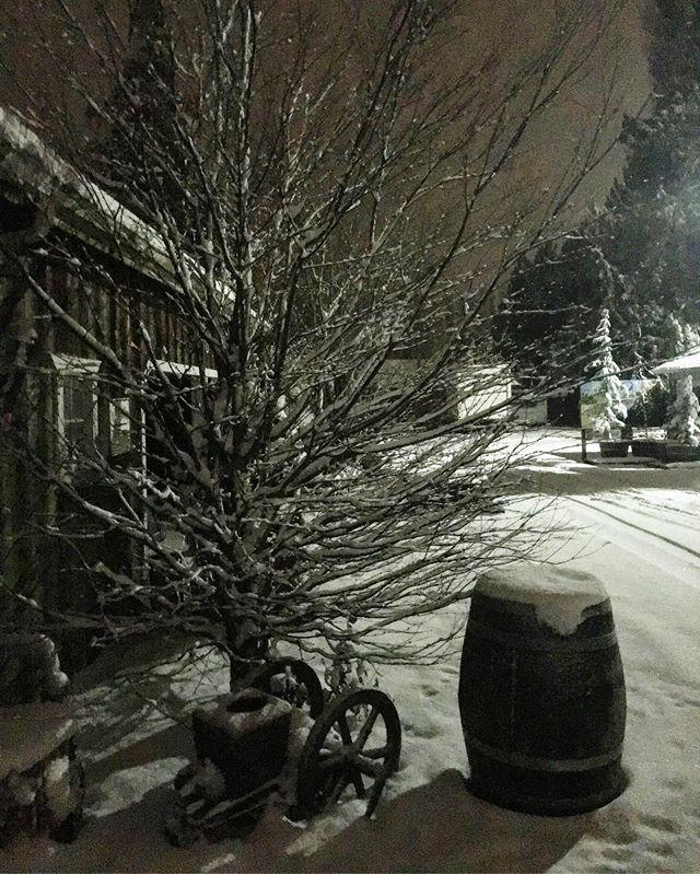 Tonight #snow #night #farm #pnw #skagitvalley