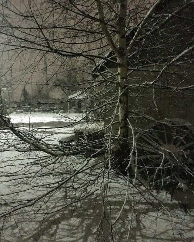 More from the night. #night #snow #pnw #skagitvalley