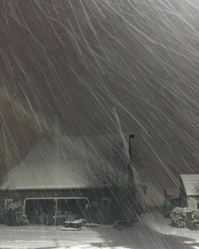 Heavy snowfall. #snow #pnw #skagitvalley #westernwashington
