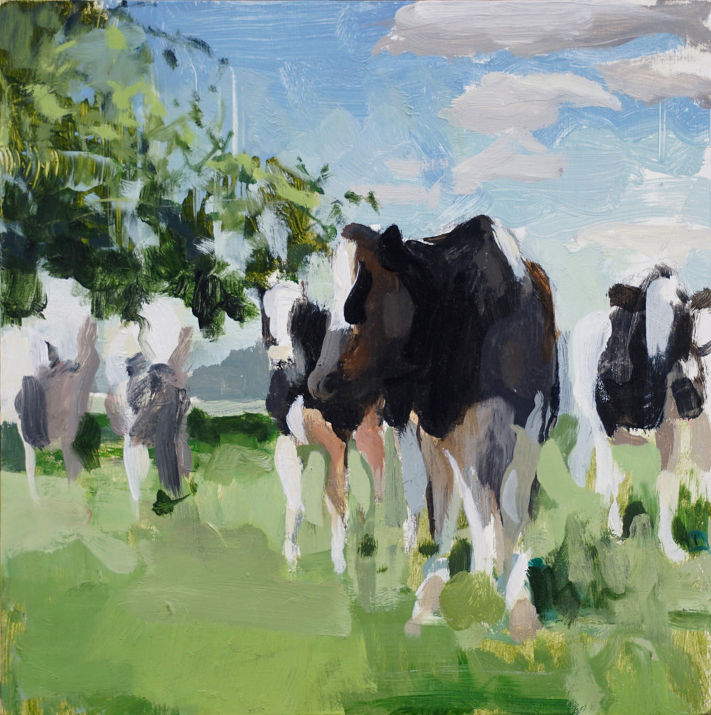 mark-crenshaw-1661-5-cows-a.jpg