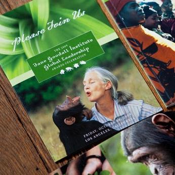 Jane Goodall 2009
