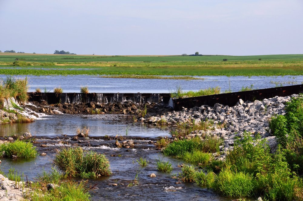 CREP wetlands like this one on Tim Minton's farm are larger, strategically placed wetlands being restored in the tile-drained region of North Central Iowa. On average, they can remove from 30 to 70 percent of nitrate from tile drainage water.