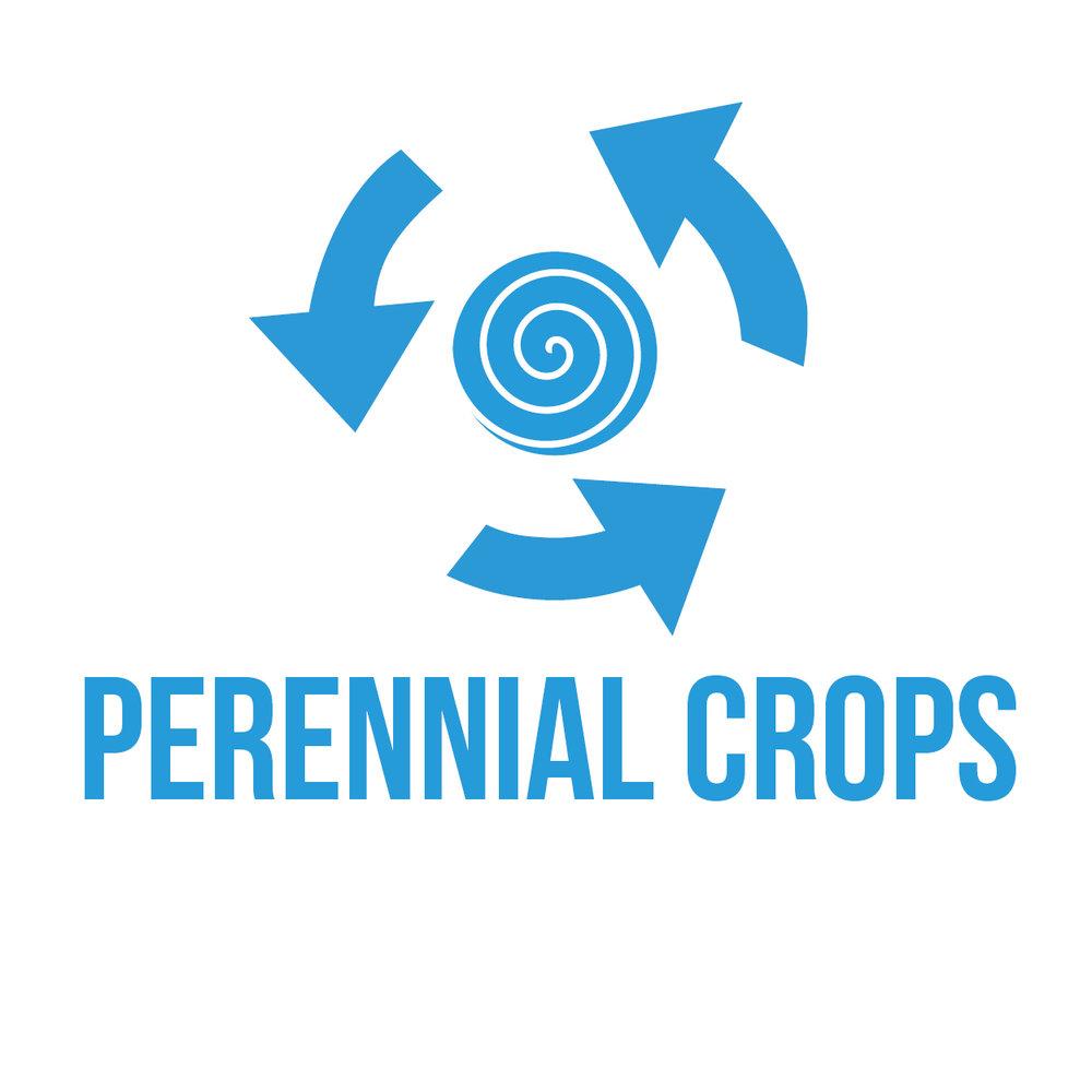 icon-perennialcrop-square.jpg