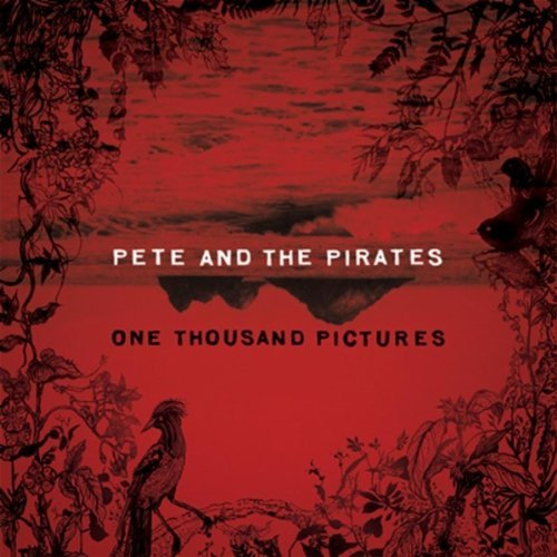 pete-and-the-pirates-one-thousand-pictures-2011.jpg