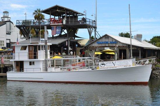 osprey-boat-charters.jpg