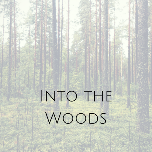 INTO+THE+WOODS+(3).png