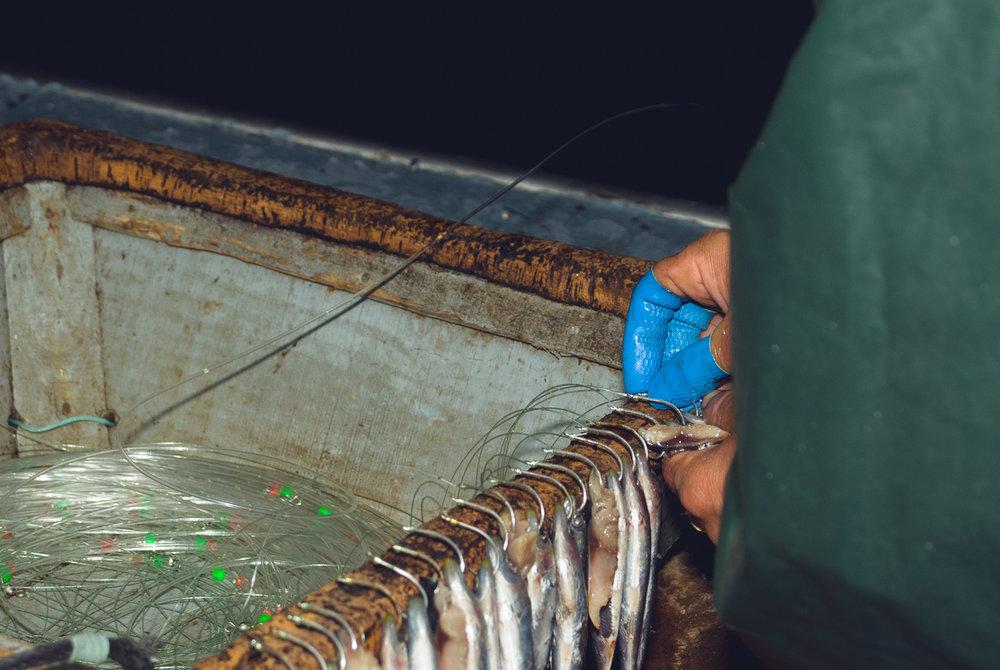 farelo-sardine-preperation.jpg