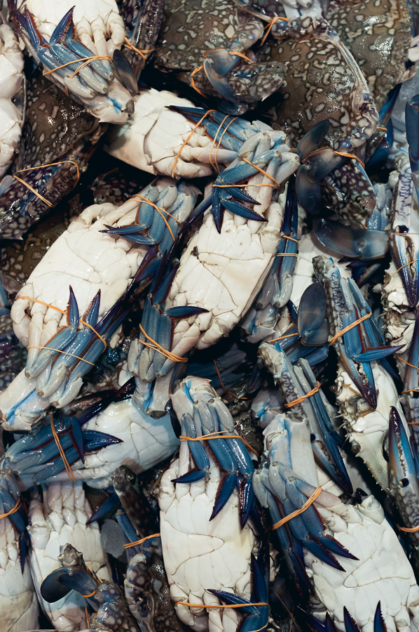 billings-gate-market-blue-crab.jpg
