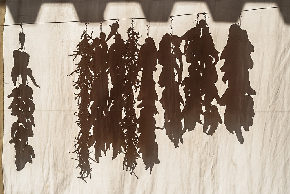 drying-peppers-silhouete.jpg
