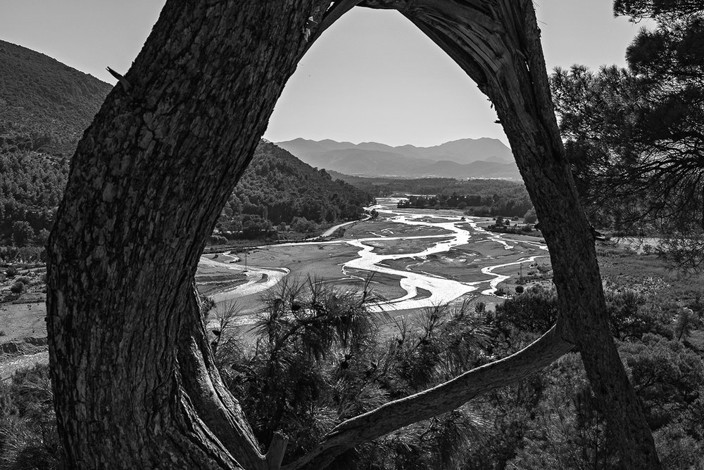 saklikent-river-tree-landcape.jpg