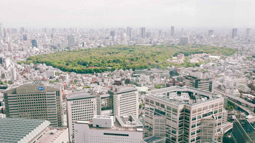 tokyo-city-pakr-green-government-building-view.jpg