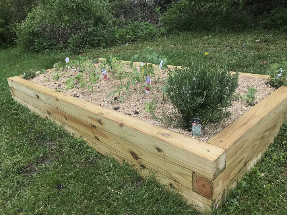Planted Garden Bed