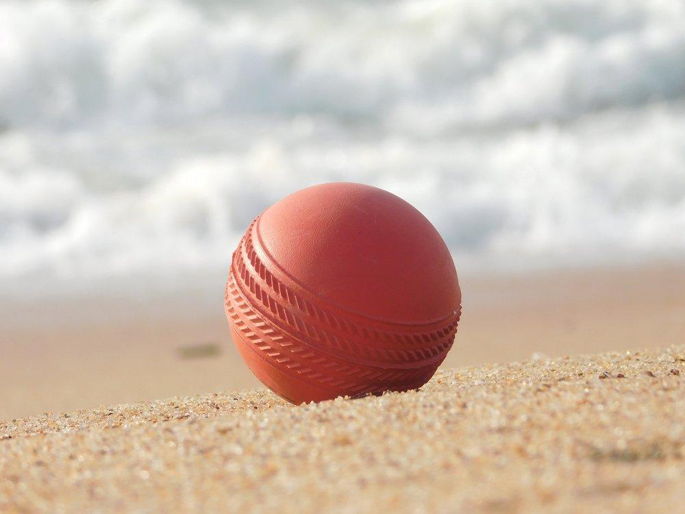 cricket .jpg