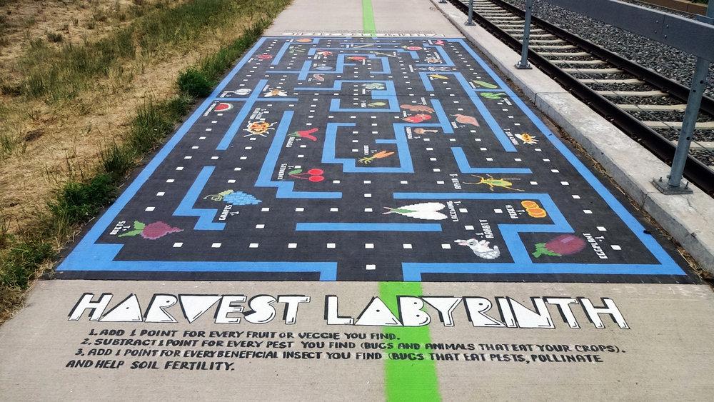 Harvest Labyrinth