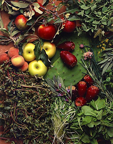 NM Food Ingredients.jpg