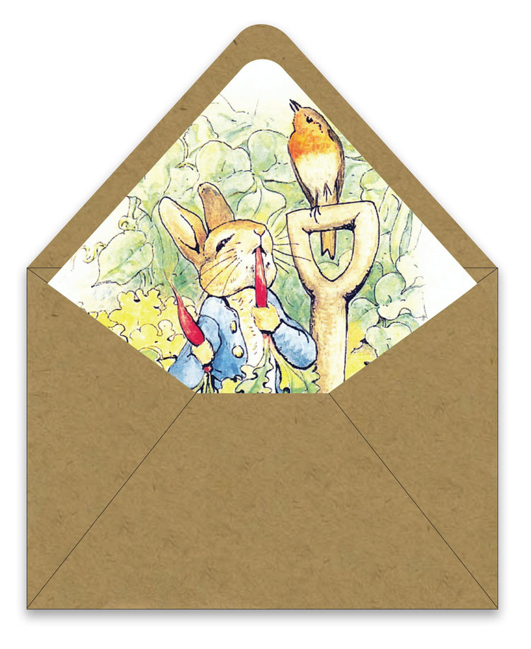 Peter rabbit birthday invitation suite foreword press design peter rabbit envelope linerg filmwisefo