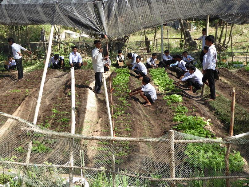Students work  in Sofie's organic garden