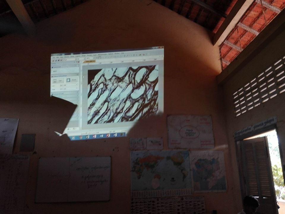 Microscope Presentation-grade 7th.jpg
