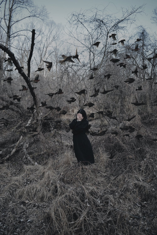 The Nightingales