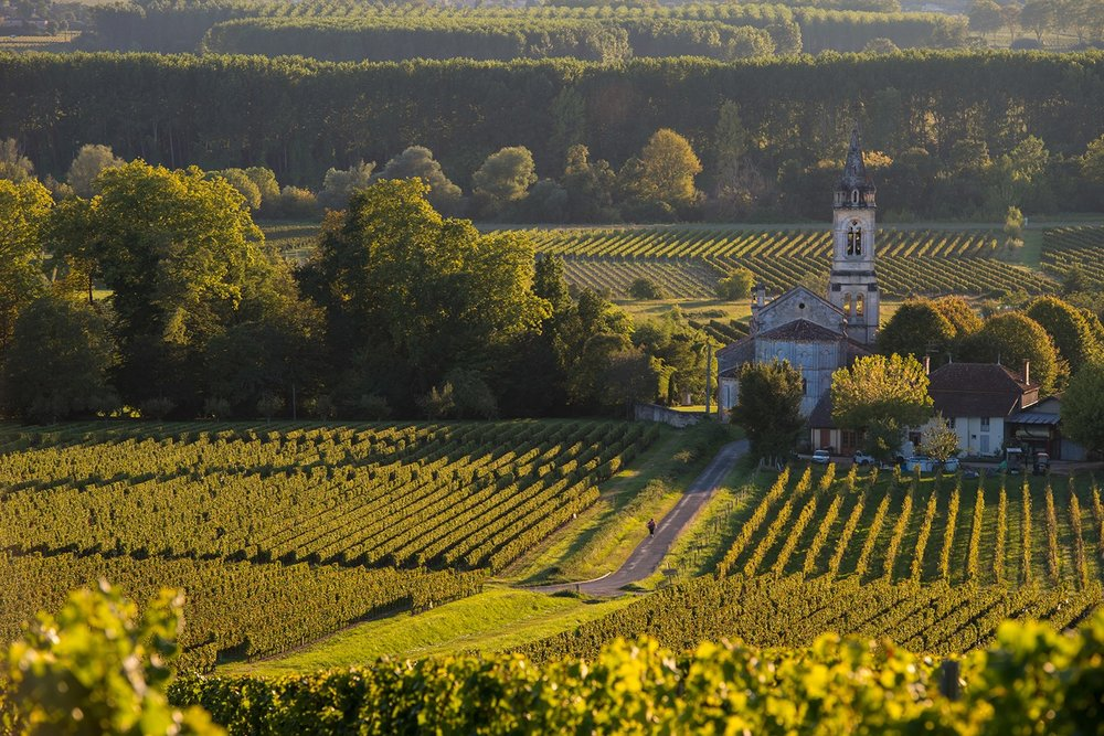 Bordeaux_FRANCE_SauternesLoupiac_VineyardLandscape_ss_217211851_gallery.jpg