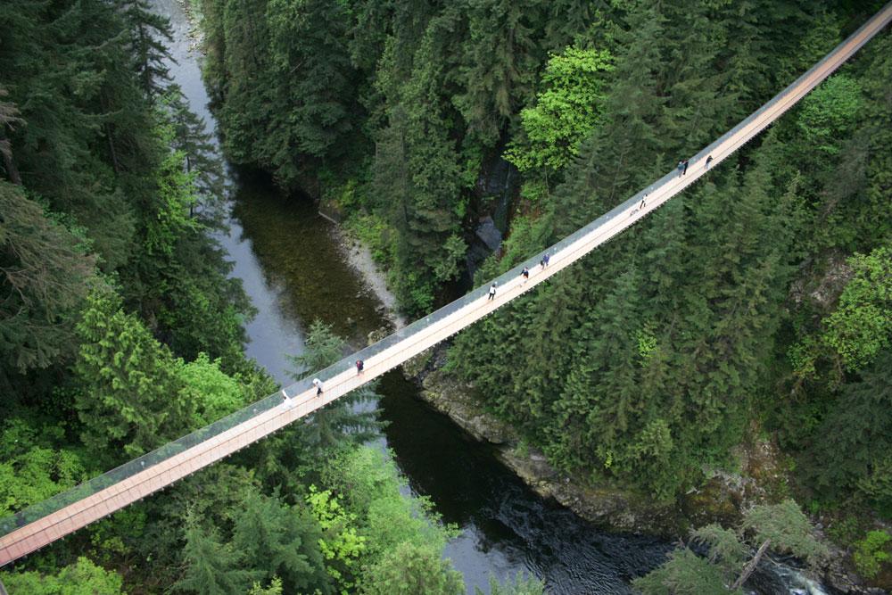 01_bridge.jpg