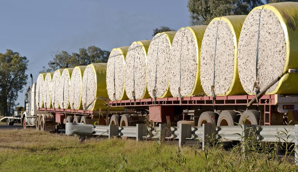 iStock-153504938 Rolls of Cotton Australia.jpg