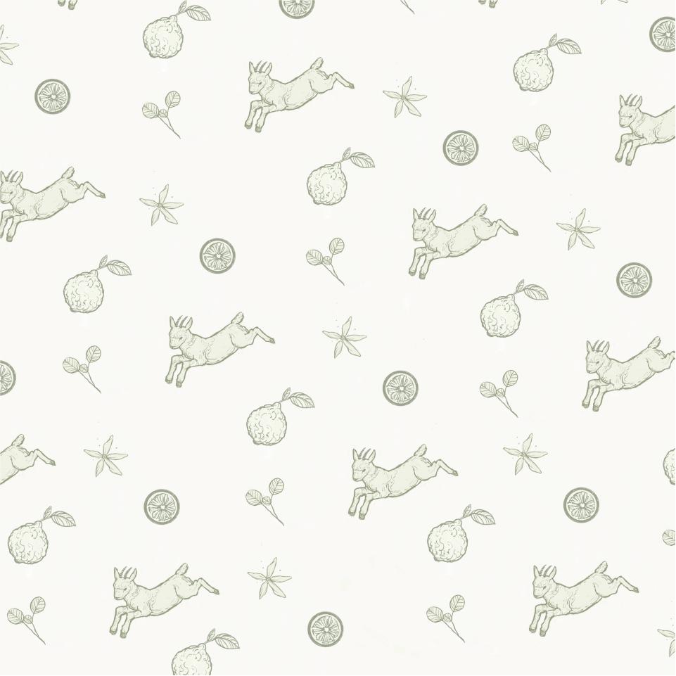 bergamont pattern -15.png