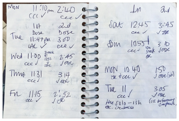 We have dozens of these notebooks that record the times The Professor and I administer each dose of the date-rape drug. We also record additional wakings and wanderings when Mathilda is on the prowl for food. Occasionally, we permit ourselves a gag or two and the odd message of encouragement.