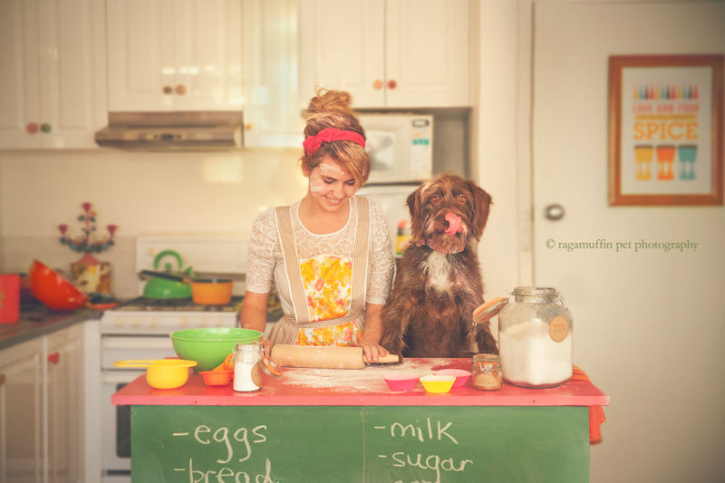 Cooking with your dog by Ragamuffin Pet Photography Melbourne