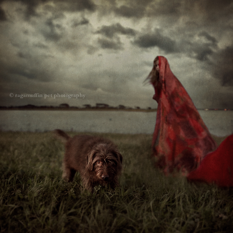 Dramatic photo of woman and dog