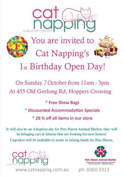 Cat Napping and Pet's Haven Event - Hoppers Crossing Melbourne - Ragamuffin Pet Photography