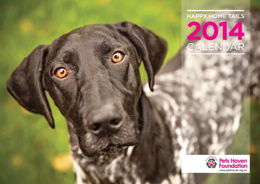 Pets Haven Calendar