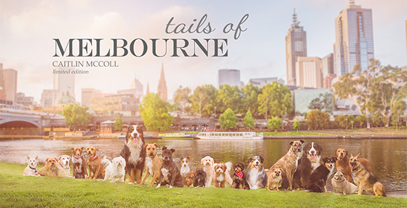 tails-of-melbourne-email