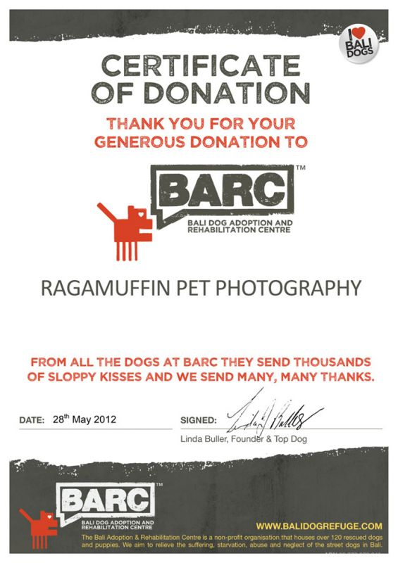 Certificate of Appreciation for Ragamuffin Pet Photography in Melbourne