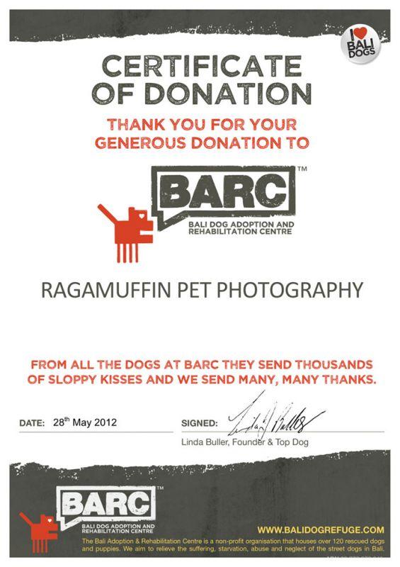 Certificate of Appreciation for Ragamuffin Pet Photography in Melbourne