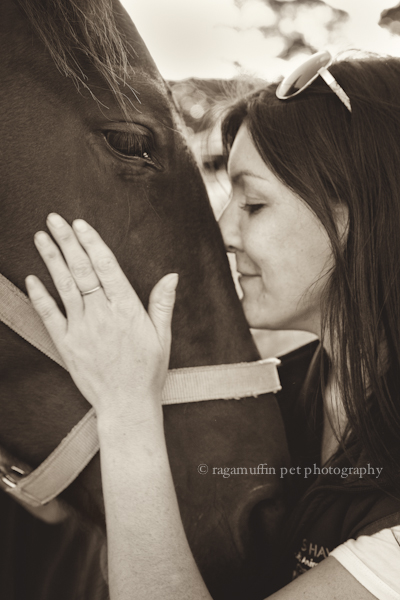 Horse photography in Melbourne