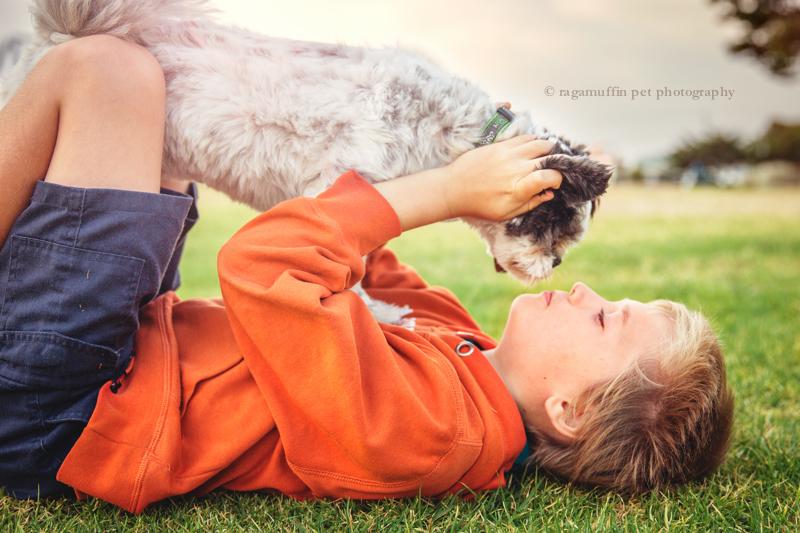 Pet Photography Melbourne
