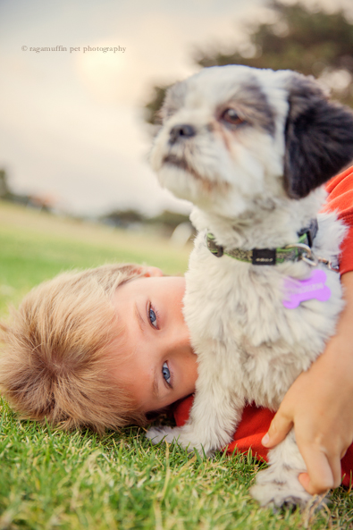 Dog Photographer Melbourne