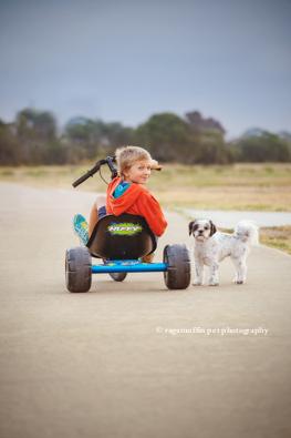 Pet Photographer Melbourne