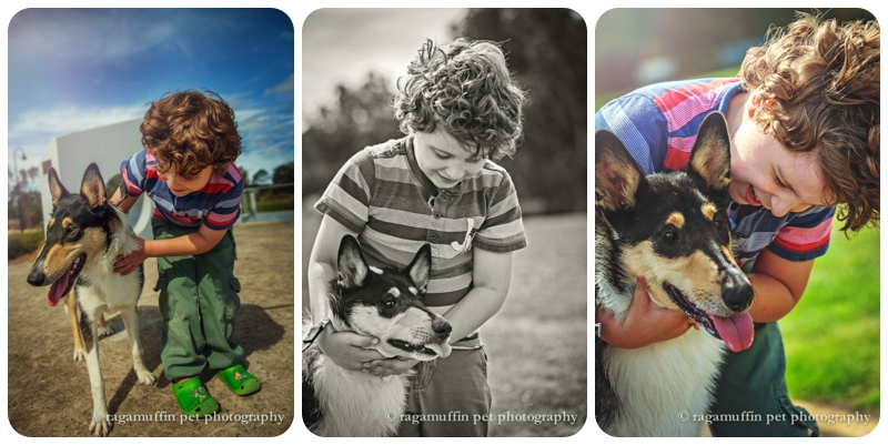Photo of Dogs for Kids with Disabilities